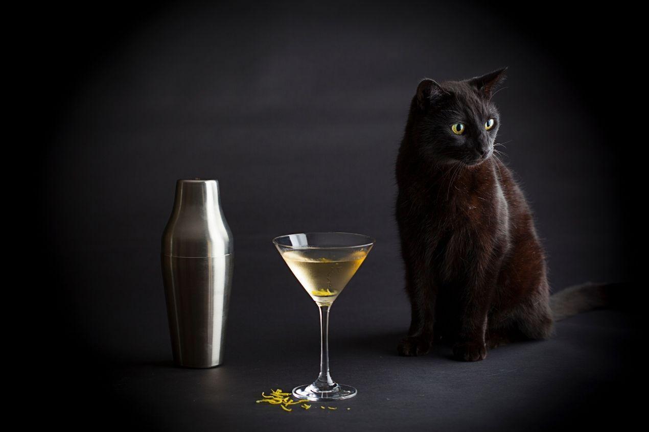 Photo for: The Islay Martini, Shaken not Stirred