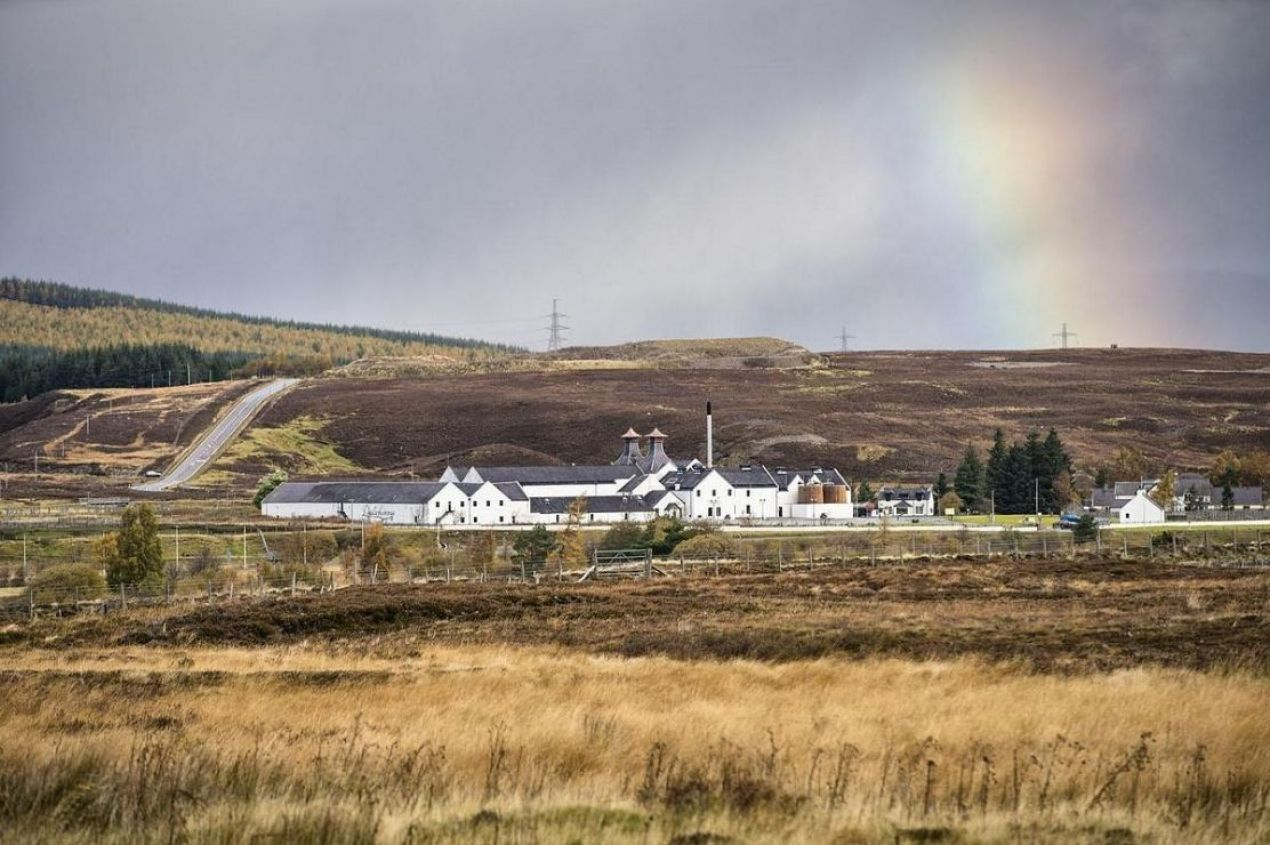 Photo for: Best Distilleries to Visit in Scotland If You Are A Tourist
