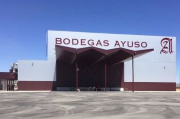 Photo for: BODEGAS AYUSO - La Mancha Winery