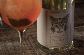 Photo for: DryCat Gin - From Brazil To London