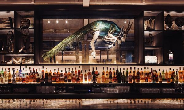 Photo for: Q + A with Enrico Chiappini, Head Bartender at Dukes Hotel