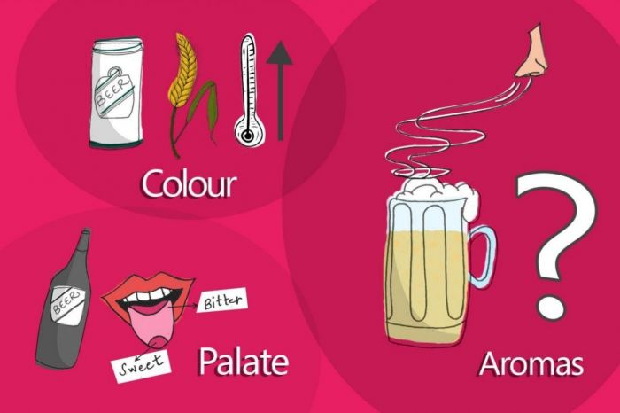 Photo for: How to taste beer and understand its quality
