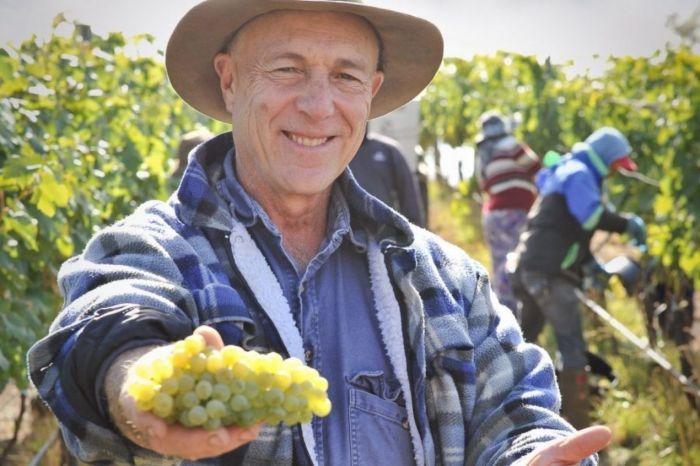 Photo for: Meet the first Australian producers of Gruner Veltliner